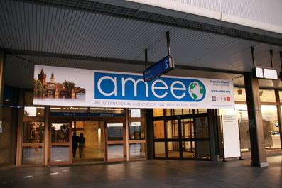 AMEE2008-3